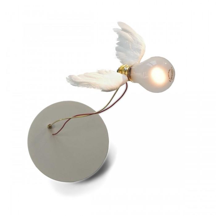 ingo maurer lucellino nt wandleuchte designer lampen leuchten mit preisgarantie. Black Bedroom Furniture Sets. Home Design Ideas